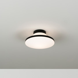 Geyser Ceiling/Wall Light